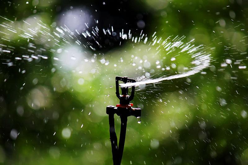 Come si Progetta un Impianto di Irrigazione?